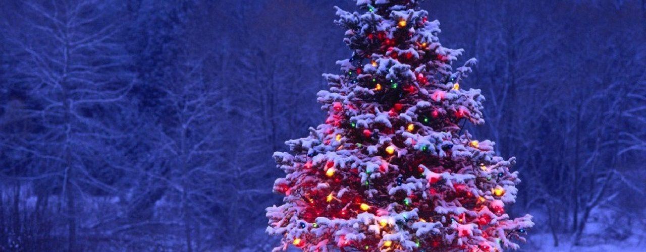 چگونه درخت کریسمس را تزئین کنیم