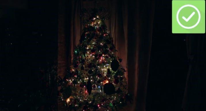 درخت کریسمس در تاریکی